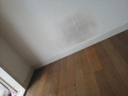 テレビ、冷蔵庫等の後部壁面の黒ずみの写真