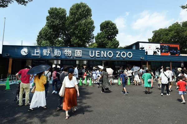 【御徒町駅の1人暮らし】御徒町駅の上野動物園